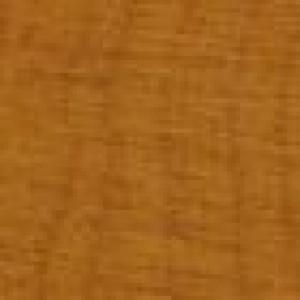 Exterior Wood Stain Light Oak 1 Litre
